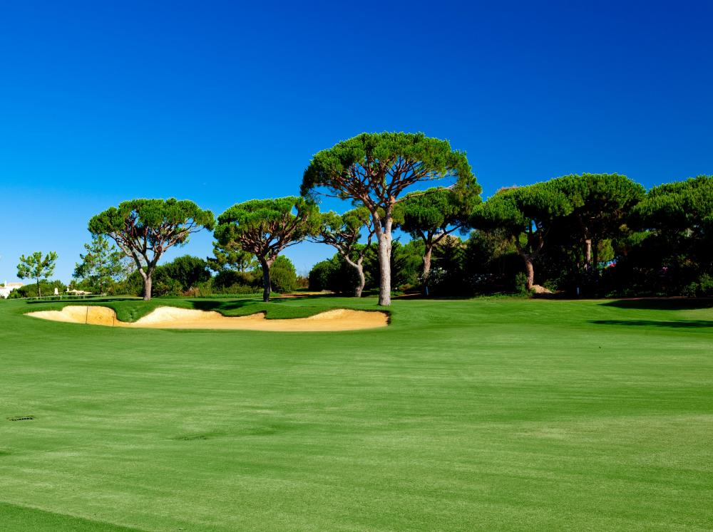 Visit one of the 30 golf courses of the Algarve